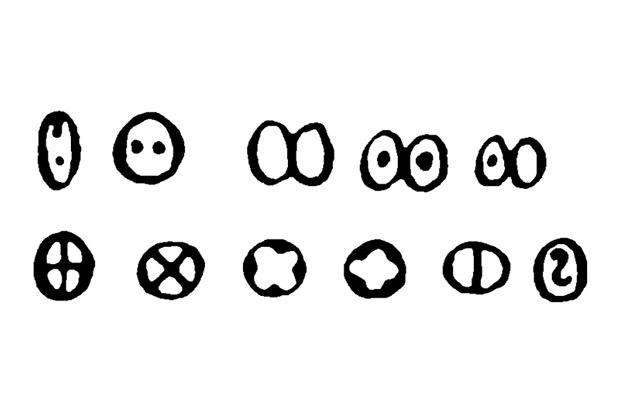 Летописные варианты написания буквы «о» из книги Карского Е.Ф. «Славянская кирилловская палеография»