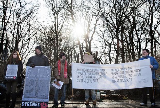 Акция протеста у зоопарка Копенгагена