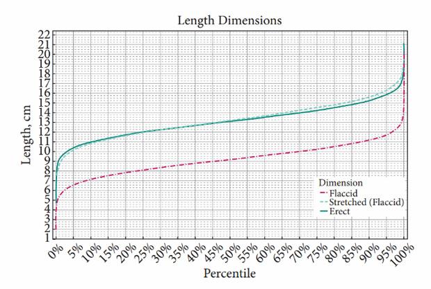 Зависит ли длина пениса от роста и веса человека