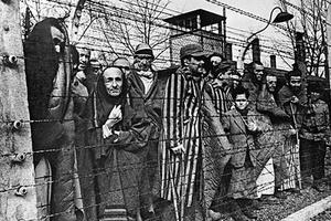 Заключенные концлагеря Аушвиц
