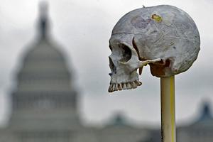Инсталляция из миллиона костей в Вашингтоне в память о геноциде и государственном насилии в различных странах