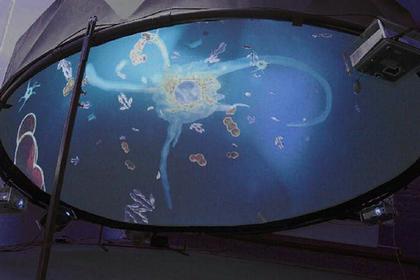BIOCAD покажет применение клеток HeLa в онкологических исследованиях