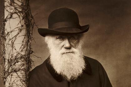 Гипотеза Дарвина оказалась несостоятельной