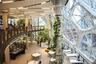 Внутри здания высажены десятки тысяч растений, привезенных из 30 стран мира. Среди них папоротники, бегонии, фикусы и алоказии.
