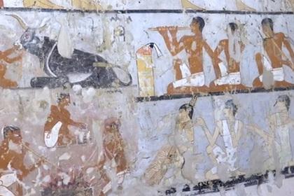 египте нашли затерянную гробницу обученными обезьянами