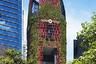 Абсолютным победителем и лучшим небоскребом на планете назван Oasia Hotel Downtown. Этот сингапурский проект уже имеет награды — в 2016 году он вошел в тройку финалистов Emporis Skyscraper Award. В 2018-м Oasia Hotel Downtown признали красивейшим в мире небоскребом. И есть за что: уникальная «живая» башня вся — от фасада до этажей — представляет собой взаимосвязанную систему садов.