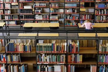 Голодные крысы сгрызли редкие книги на 200 тысяч евро