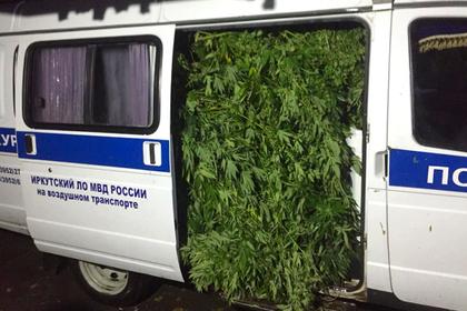 Оперативники показали полную «Газель» марихуаны