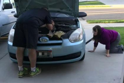 Котенок проехал 27 километров в двигателе автомобиля и выжил