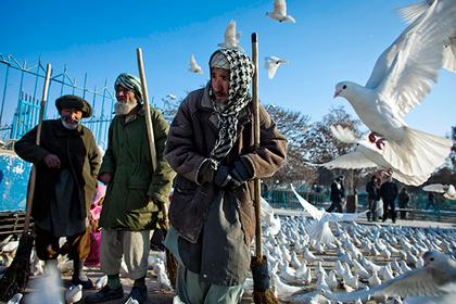 Выживаемость взрослых в России оказалась на уровне Афганистана