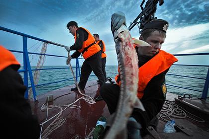 Украинских рыбаков задержали в Азовском море за браконьерство
