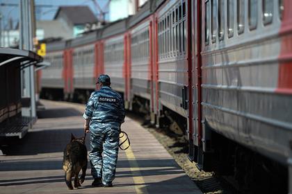 Иностранного дебошира выпроводили из российского поезда