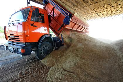 Ростовская область станет лидером по экспорту продовольствия