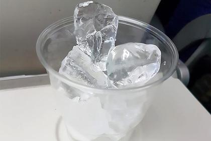 Страдающий от жажды пассажир получил стакан льда вместо воды и опозорился