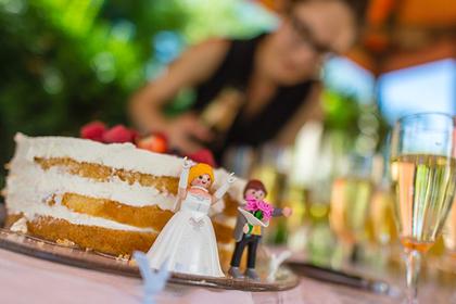 Невеста порадовалась горю сестры и лишилась семьи и жениха