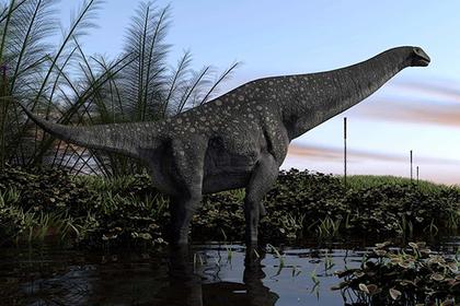 Россия оказалась родиной титанозавров