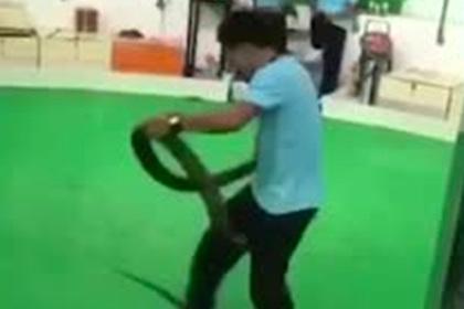 Королевская кобра ужалила дрессировщика на глазах у публики