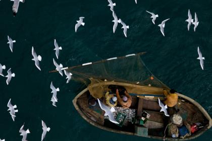Российские рыбаки поставили рекорд