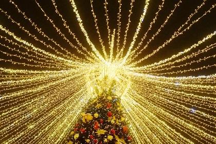 В Туркмении нашли самую большую новогоднюю елку в СНГ