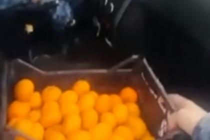 В МВД объяснили поездку обиженных полицейских за мандаринами