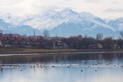 Российский регион запретил собирательство на «сопредельной территории»