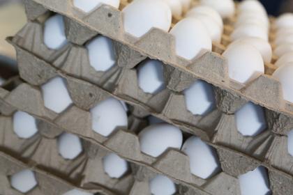 Свердловский губернатор пообещал жителям упаковку из 12 яиц
