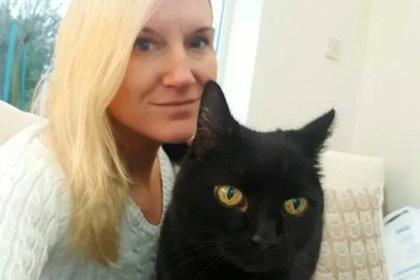 Пропавшая десять лет назад кошка нашлась в соседнем доме