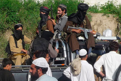 США договорились с террористами о мире photo