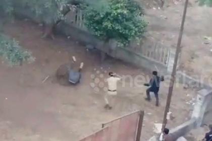 Леопард забрел в город и принялся калечить людей photo