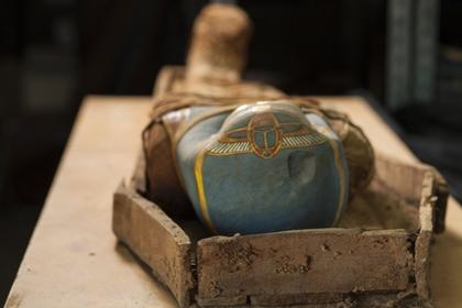 египте нашли гробницу полусотней мумий