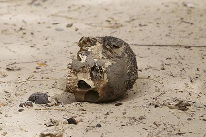 Индиец пришел в новую квартиру и нашел мумию