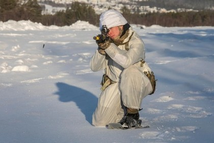 Великобритания задумала защититься от России в Арктике