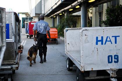 Россиянина арестовали на Гаити вместе с бандой