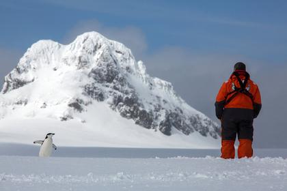 Российские ученые создали суперсани для Антарктиды
