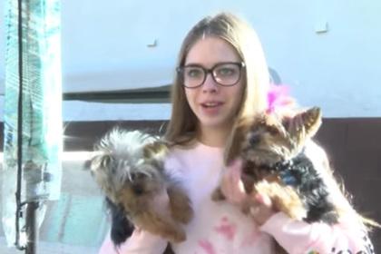 Женщина отбила щенка от ястреба