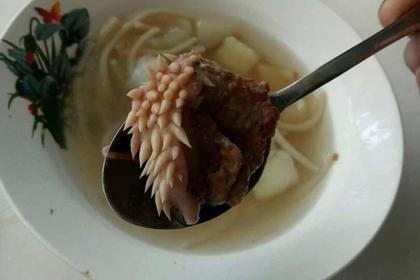 Дети нашли в школьном супе мясо с «белыми щупальцами»