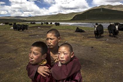 Он проехал через весь Тибет и встретил живого Будду