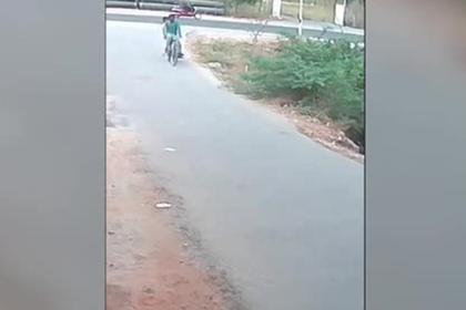 Нападение агрессивной кобры на велосипедистов попало на видео