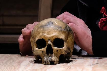 Человеческие ребра и череп нашли на востоке Москвы