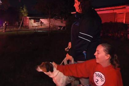 Сообразительная собака спасла семью от гибели