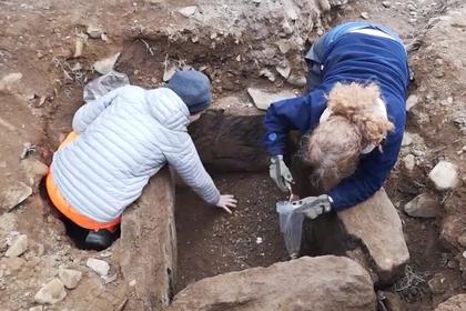 В древней могиле нашли «айфон» бронзового века