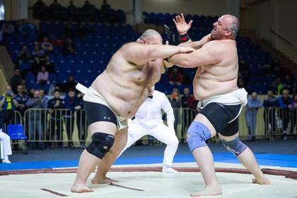 Стали известны чемпионы России по сумо