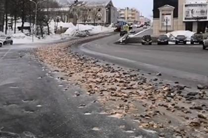 Появилось видео с разбросанными по центру российского города рыбьими головами