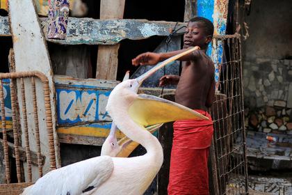 Россияне решили увидеть мир и очутились в самой грязной стране Африки