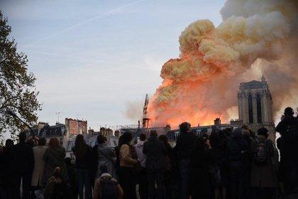 Собору Парижской Богоматери предсказали полное разрушение
