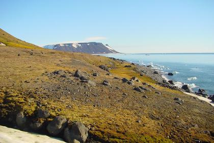 Историки и военные отправятся в Арктику и повторят путь Брусилова