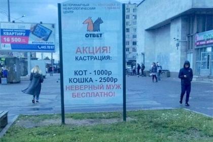 Реклама о кастрации мужей оскорбила петербуржцев