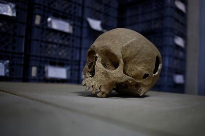 Ученые нашли самую древнюю ДНК в мире