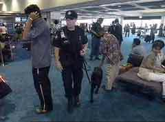 Секьюрити в чикагском аэропорту. Кадр телекомпании НТВ.
