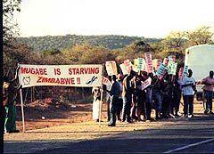 """ДЕМОНСТРАЦИИ ПРОТЕСТА. НАДПИСЬ НА ПЛАКАТЕ """"МУГАБЕ ДУШИТ ЗИМБАБВЕ ГОЛОДОМ"""". Фото с сайта africancrisis.org"""